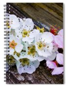 Pink And White 2 Spiral Notebook