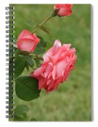 Pink And White Blended Stem Spiral Notebook