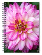 Pink And White Dahlia Square Spiral Notebook
