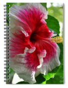 Pink And White Hibiscus Spiral Notebook