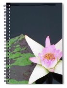 Pink And White Lily Spiral Notebook