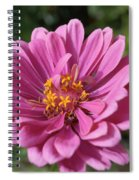 Pink And Yellow Flower Spiral Notebook