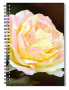 Pink And Yellow Rose Spiral Notebook