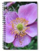 Pink Anemone Flower Spiral Notebook