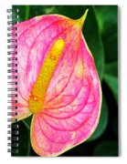 Pink Anthurium Spiral Notebook