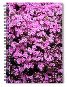 Pink As Pink Can Be Spiral Notebook