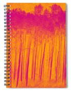 Pink Aspen Trees Spiral Notebook