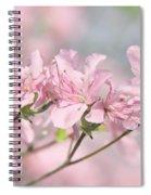 Pink Azalea Flowers In The Spring Spiral Notebook