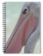 Pink Backed Pelican Spiral Notebook