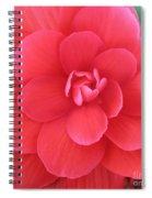 Pink Begonia Spiral Notebook