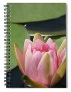 Pink Bloom Spiral Notebook