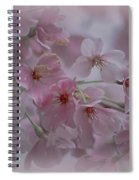 Pink Blossoms Spiral Notebook