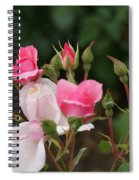 Pink Buds Starting To Open Spiral Notebook