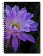 Pink Cactus Bloom  Spiral Notebook