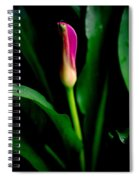 Pink Calla Lily Blossom Spiral Notebook