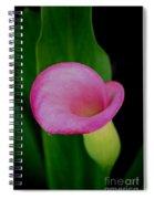 Pink Calla Lily Spiral Notebook