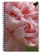 Pink Carnation Spiral Notebook