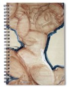 Pink Caryatid With A Blue Border Spiral Notebook