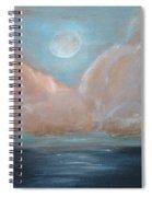 Pink Clouds Spiral Notebook
