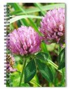 Pink Clover Wildflower - Trifolium Pratense Spiral Notebook