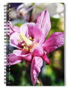 Pink Columbine Spiral Notebook