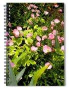 Pink Cosmos Swirl Spiral Notebook