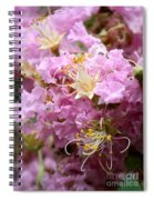 Pink Crepe Myrtle Closeup Spiral Notebook