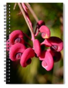 Pink Curls - Flower Macro Spiral Notebook