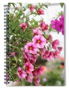 Pink Curtain Spiral Notebook