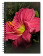 Pink Day Lily Spiral Notebook