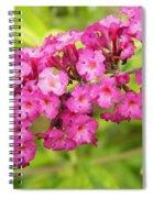 Pink Delphinium Spiral Notebook
