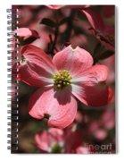 Pink Dogwood At Easter 3 Spiral Notebook