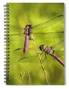 Pink Dragonflies Spiral Notebook