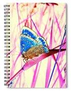 Pink Dream Spiral Notebook