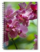 Pink Elegance Spiral Notebook