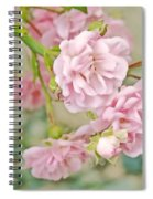 Pink Fairy Roses Spiral Notebook