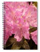Pink Fiesta Spiral Notebook