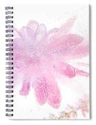 Pink Float Spiral Notebook