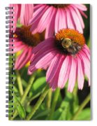 Pink Flower And Bee Spiral Notebook
