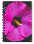 Pink Flower Spiral Notebook