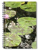 One Pink Water Lily With Lily Pads Spiral Notebook