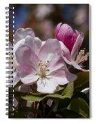 Pink Flowering Crabapple Blossoms Spiral Notebook