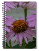 Prairie Splendor   Spiral Notebook