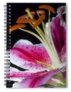 Pink Freckles Spiral Notebook