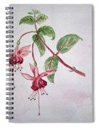 Pink Fuchsia's  Spiral Notebook