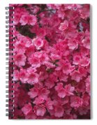 Pink Full Frame Azalea Blossoms Spiral Notebook