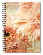 Pink Gerber Daisies 3 Spiral Notebook