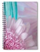 Pink Gerber Daisy Spiral Notebook