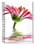 Pink Gerbera Flood 2 Spiral Notebook