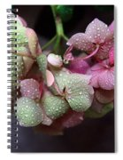 Pink Green And Rain Spiral Notebook